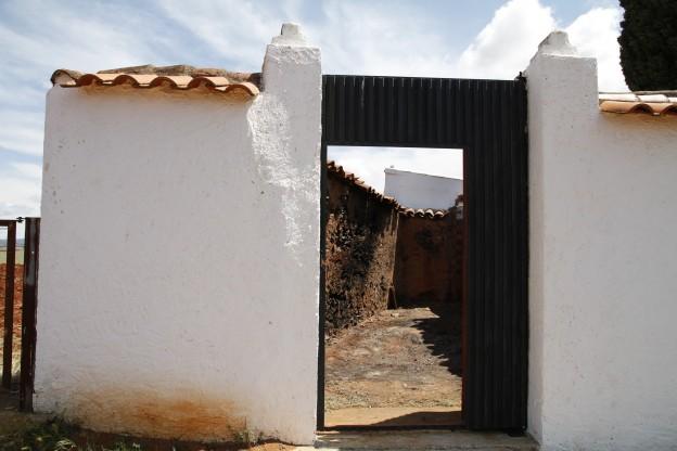 120521-Exhumación Abenójar (2)