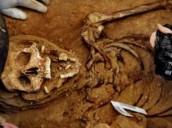 Exhuman los restos del sindicalista fusilado Timoteo Mendieta tras 12 días de trabajos
