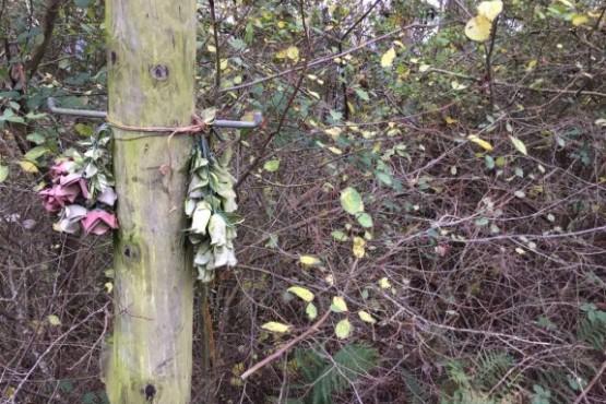 Pravia desentierra la memoria olvidada en la fosa de 'La Canalona'