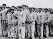La dolorosa ausencia de los republicanos españoles deportados en una exposición sobre Auschwitz