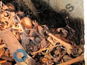 Acumulacion-huesos-columbario-amontonados-encima_EDIIMA20180314_0640_5